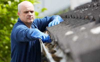 4 Reasons to Prioritize Cleaning Your Gutters During Spring
